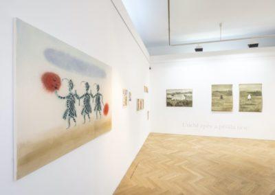 © Galerie Villa Pellé 2019, foto: Eva Malúšová : instalace výstavy Alžběta Skálová, Chůze v šeru11