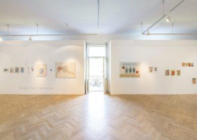 © Galerie Villa Pellé 2019, foto: Eva Malúšová : instalace výstavy Alžběta Skálová, Chůze v šeru12