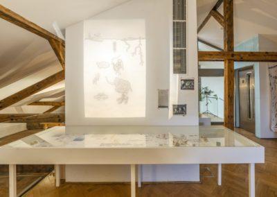 © Galerie Villa Pellé 2019, foto: Eva Malúšová : instalace výstavy Alžběta Skálová, Chůze v šeru40