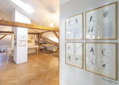 © Galerie Villa Pellé 2019, foto: Eva Malúšová : instalace výstavy Alžběta Skálová, Chůze v šeru46