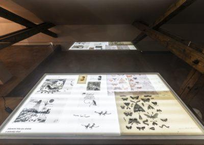© Galerie Villa Pellé 2019, foto: Eva Malúšová : instalace výstavy Alžběta Skálová, Chůze v šeru47