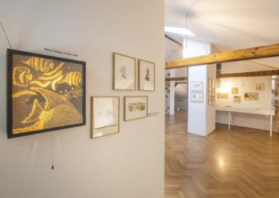 © Galerie Villa Pellé 2019, foto: Eva Malúšová : instalace výstavy Alžběta Skálová, Chůze v šeru49