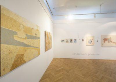 © Galerie Villa Pellé 2019, foto: Eva Malúšová : instalace výstavy Alžběta Skálová, Chůze v šeru5
