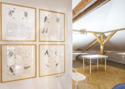 © Galerie Villa Pellé 2019, foto: Eva Malúšová : instalace výstavy Alžběta Skálová, Chůze v šeru54