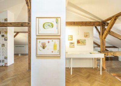 © Galerie Villa Pellé 2019, foto: Eva Malúšová : instalace výstavy Alžběta Skálová, Chůze v šeru57