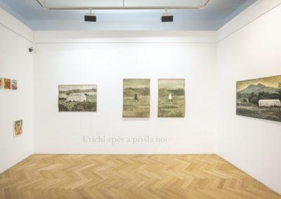 © Galerie Villa Pellé 2019, foto: Eva Malúšová : instalace výstavy Alžběta Skálová, Chůze v šeru9