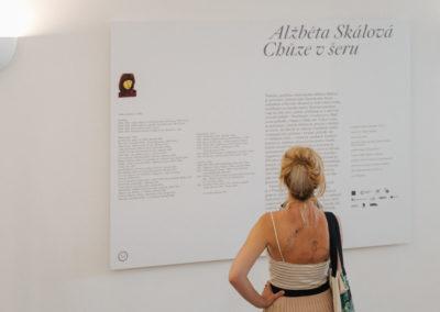 © Galerie Villa Pellé 2019, foto: Eva Malúšová : vernisáž výstavy Alžběta Skálová, Chůze v šeru2