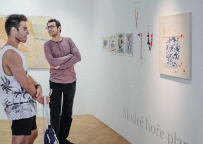 © Galerie Villa Pellé 2019, foto: Eva Malúšová : vernisáž výstavy Alžběta Skálová, Chůze v šeru65