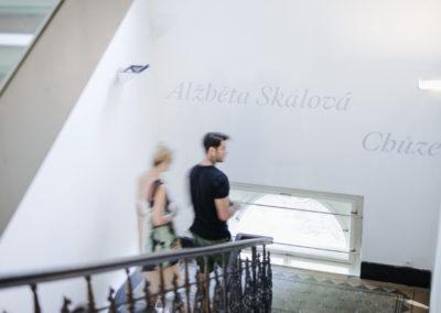 © Galerie Villa Pellé 2019, foto: Eva Malúšová : vernisáž výstavy Alžběta Skálová, Chůze v šeru70