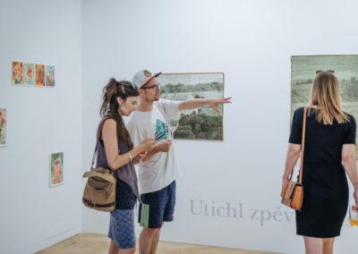 © Galerie Villa Pellé 2019, foto: Eva Malúšová : vernisáž výstavy Alžběta Skálová, Chůze v šeru91