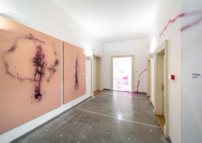 Azajtókzáródnak INSTALACE - © Galerie Villa Pellé 2019, foto Tomáš Rubín - 23