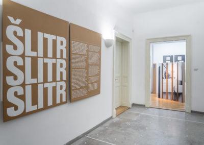 Šlitr Šlitr Šlitr, © Galerie Villa Pellé 2019, foto: Tomáš Rubín_&_Eva Malúšová_33
